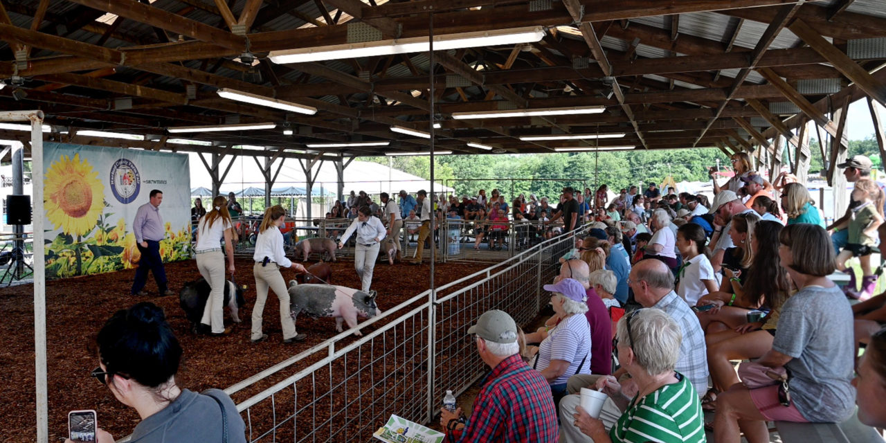 The 2019 Harford County Farm Fair Is In The Books