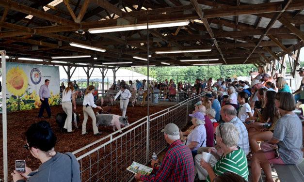 The 2019 Harford County Farm Fair Is In The Books
