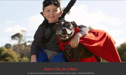 The Hero Rescue