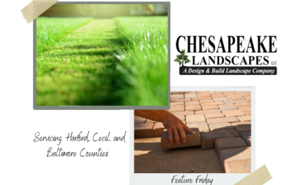 Chesapeake Landscapes – Feature Friday